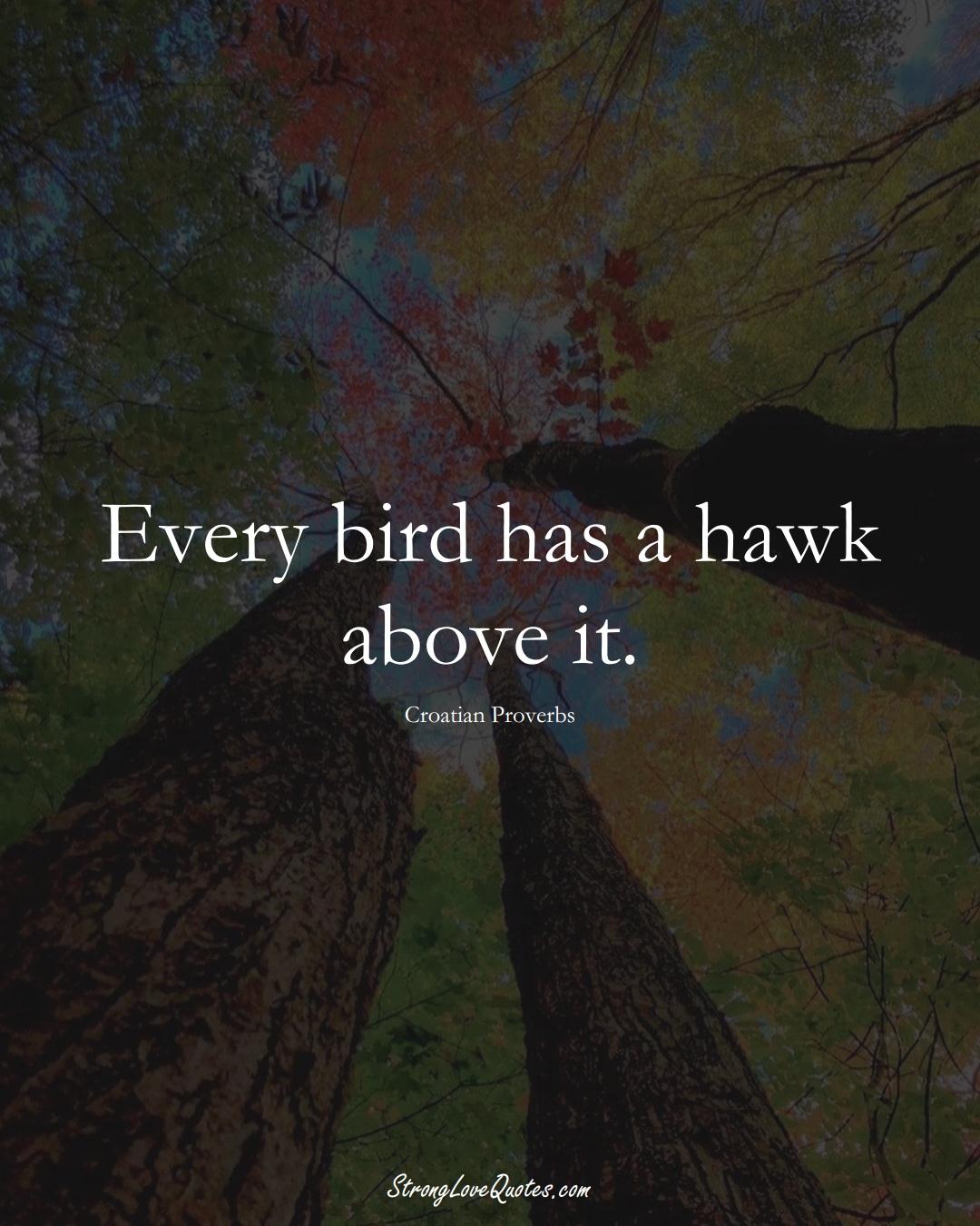 Every bird has a hawk above it. (Croatian Sayings);  #EuropeanSayings