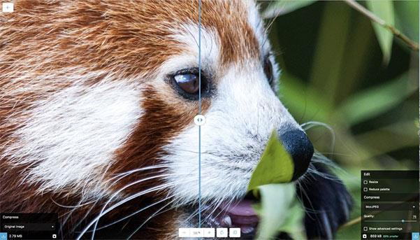هكذا يبدو Squoosh بمجرد تحميل ملف صورة