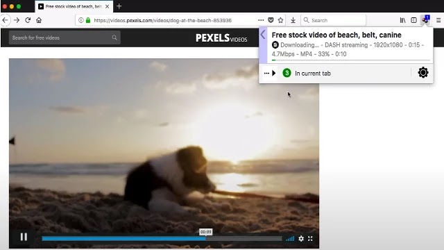 video downloaders chrome