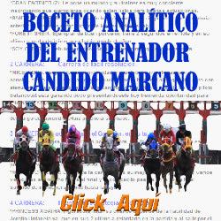 http://protocolohipico.blogspot.com/2016/12/hipismo-analisis-carreras-no-validas.html#more