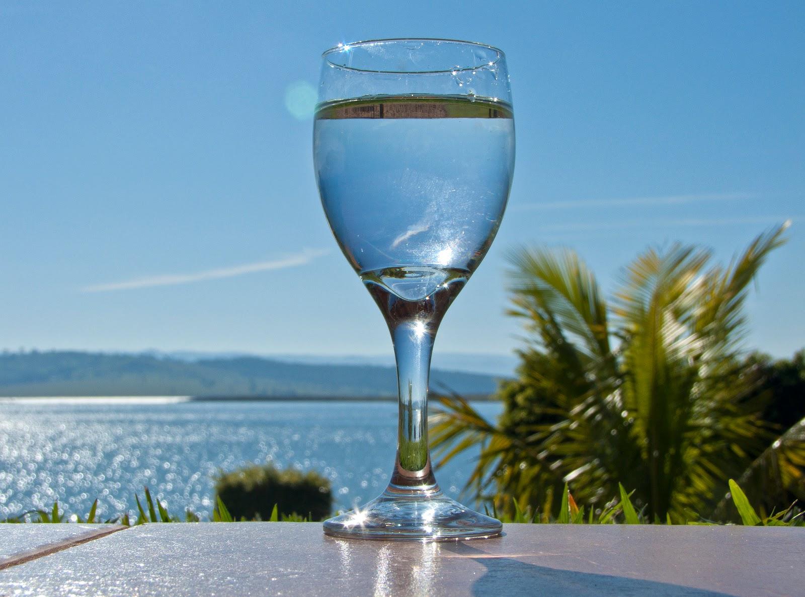 椰子の木と湖の手前に置かれたグラスの透き通った水