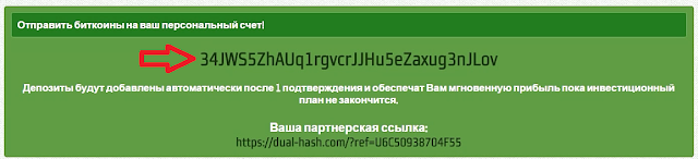 dual-hash.com хайп