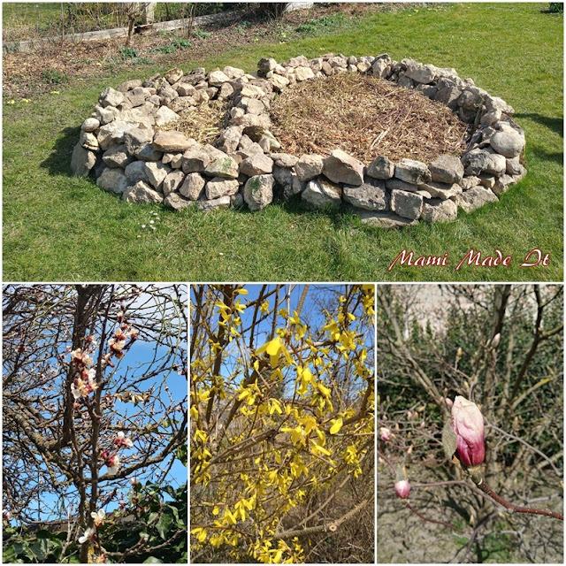 Garten März 2021