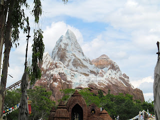 Roller Coaster Ride Mount Everest at Animal Kingdom