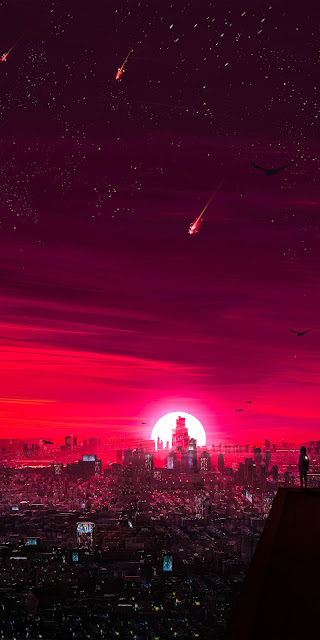 Red sunset in the starry sky