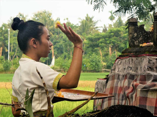 Bali - dagliga offergåvor
