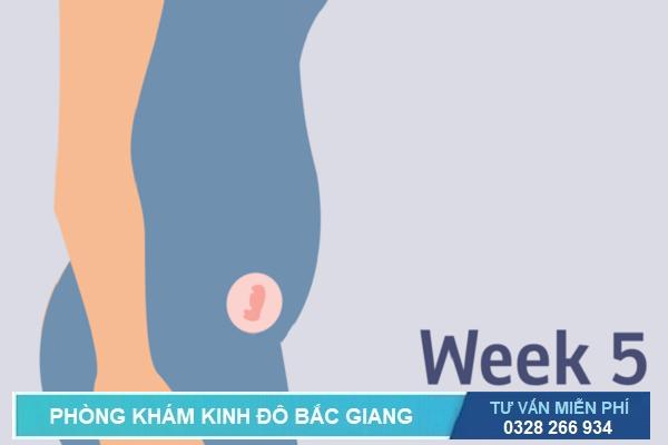 Triệu chứng gặp phải khi mang thai 5 tuần tuổi