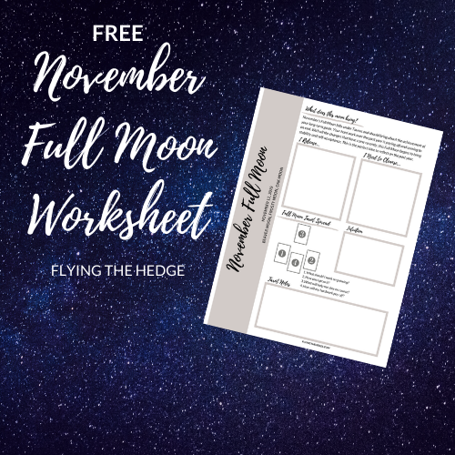 November Full Moon Worksheet