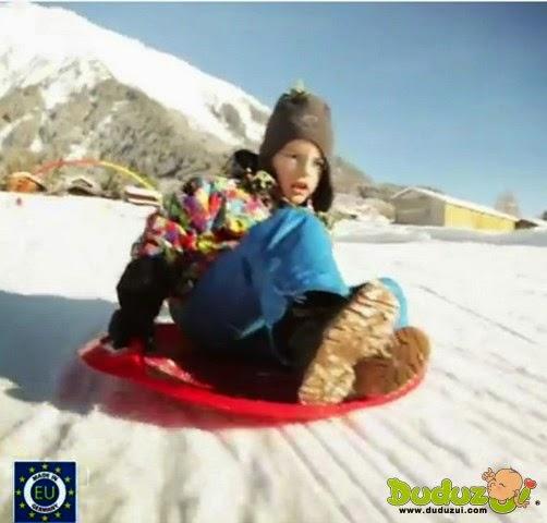 德國 BIG 滑雪(草)盤