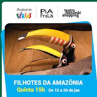 FILHOTES DA AMAZÔNIA