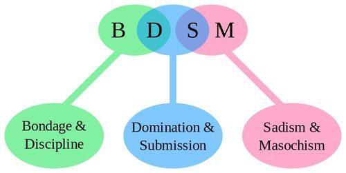 The Meaning of the word BDSM