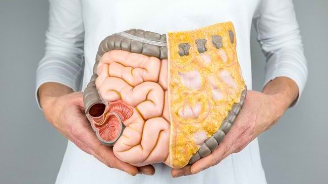 5 Foods That Are Good for Gut Health