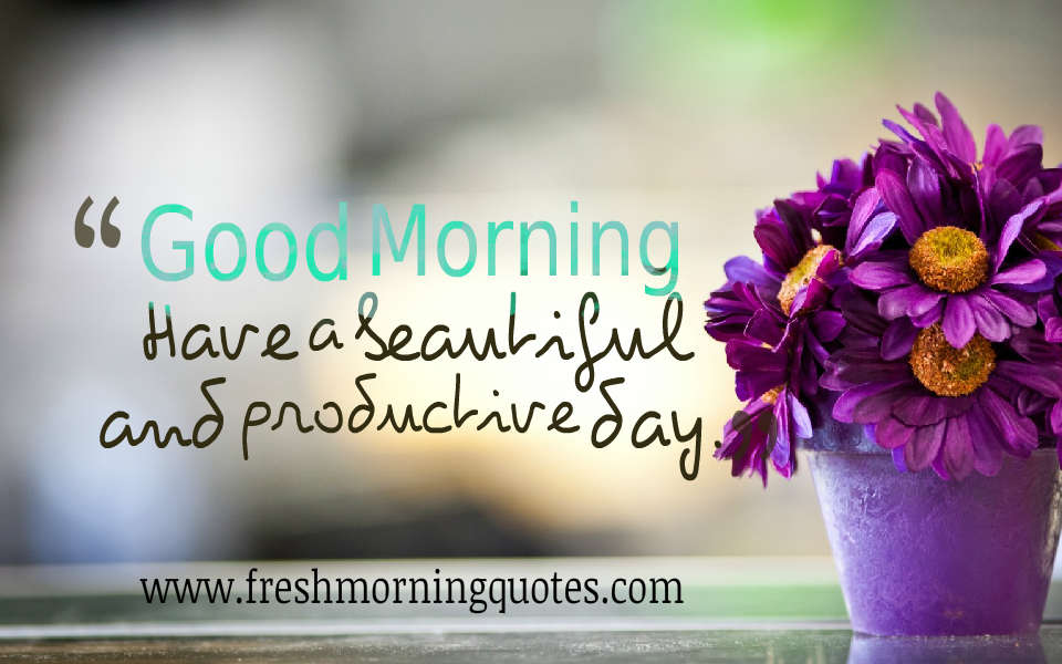 good morning have a beautiful and productive day