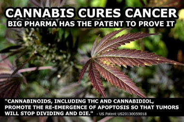 Big Pharma is withholding the cure for cancer