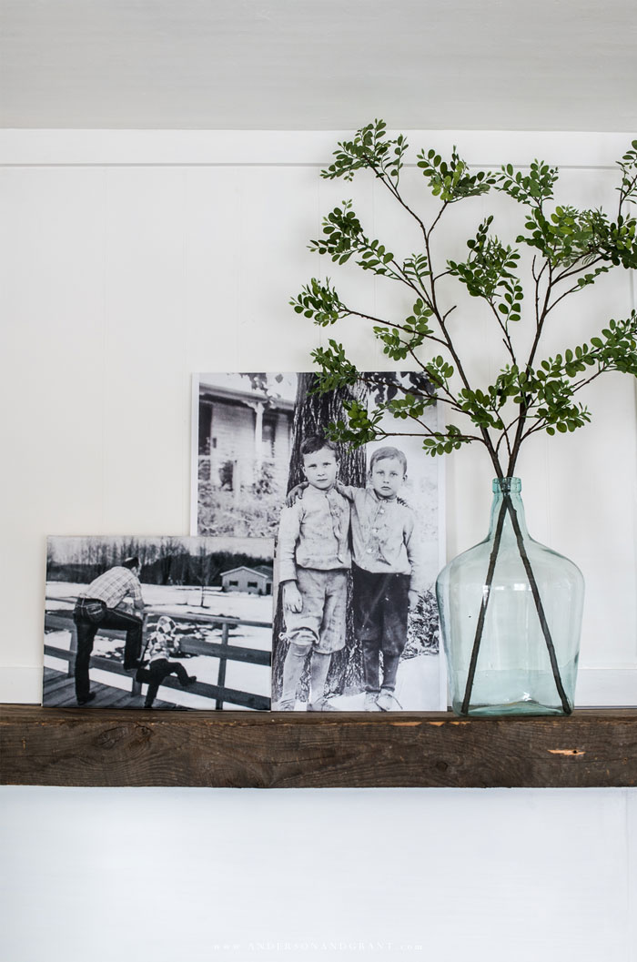 Canvas photos with demijohn of green branches.