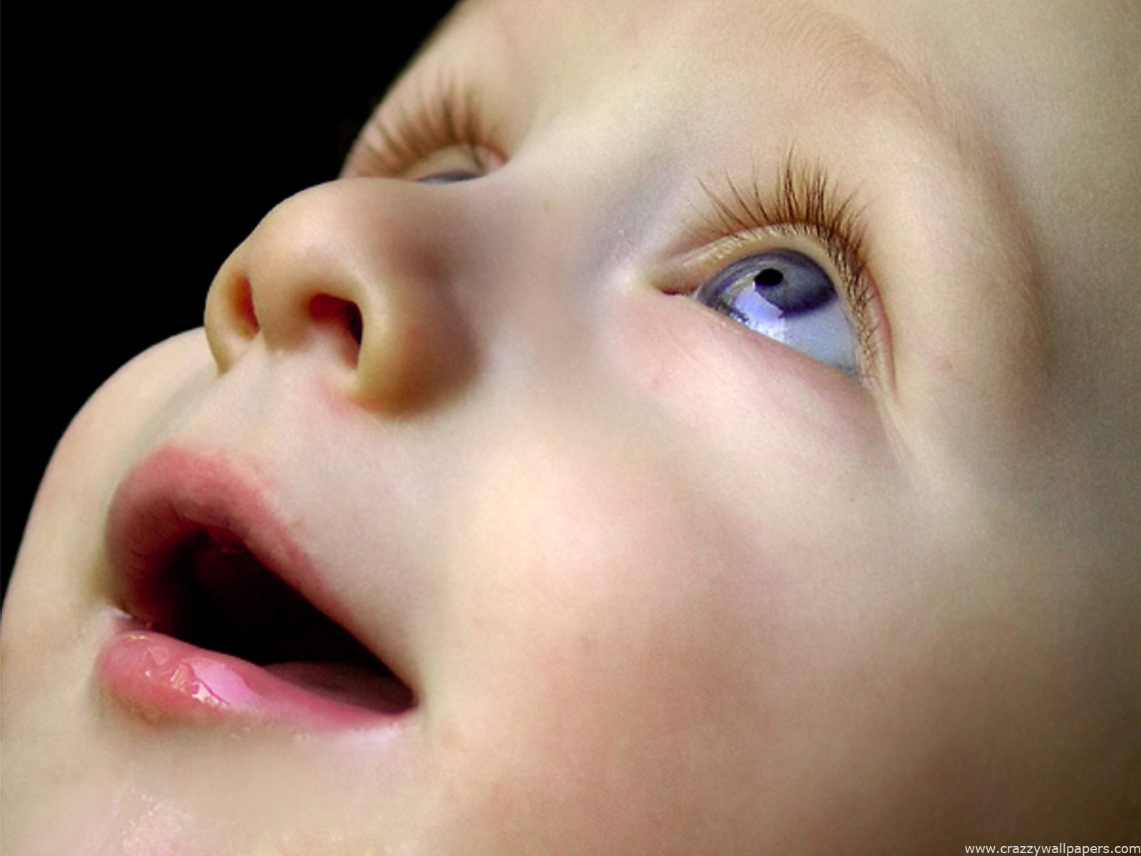 CUTE BABIES HD WALLPAPERS ~ HD WALLPAPERS