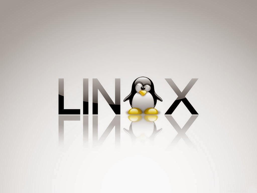 Cara Install Pemutar Video VLC di Ubuntu / Linux Mint dan Turunannya