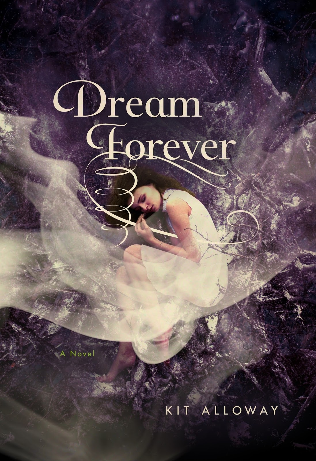 Dream Forever by Kit Alloway book cover Journey Through Fiction
