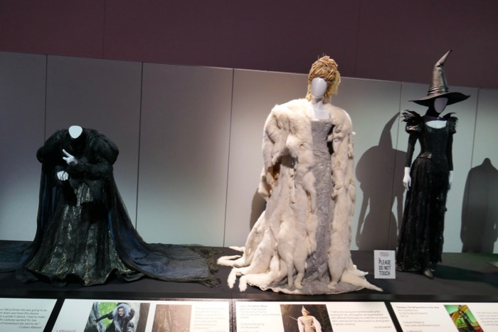 Disney Witches costumes D23 Expo 2019