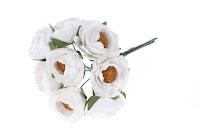 https://www.essy-floresy.pl/pl/p/Kwiaty-kamelii-biale/5040