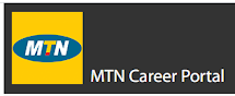 Clone of Specialist Risk Management   MTN Career