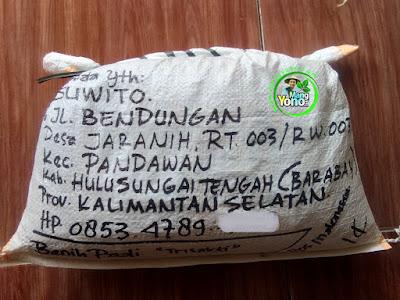 Benih pesana SUWITO Hulu Sungai Tengah, Kalsel  (Sesudah Packing)