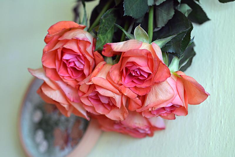 Ako predĺžiť ružiam život