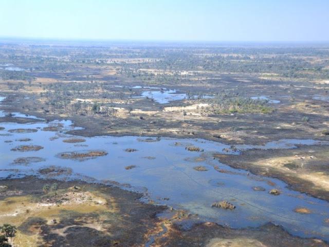 Il Delta dell'Okavango visto dall'aereo