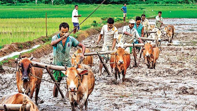 मुख्यमंत्री किसान एवं सर्वहित बीमा योजना