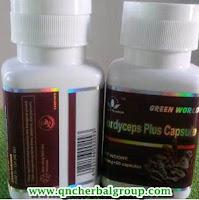 Agen Cordyceps Plus Capsule Tasikmalaya