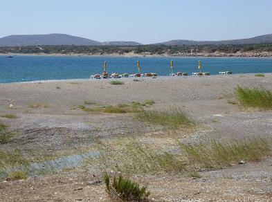 plimmiri beach