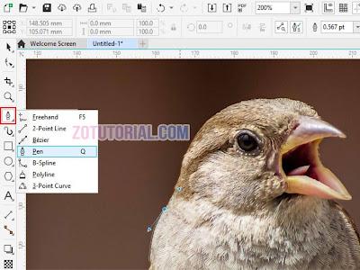 Menyeleksi dan Crop Gambar dengan Pen Tool di CorelDraw 2020