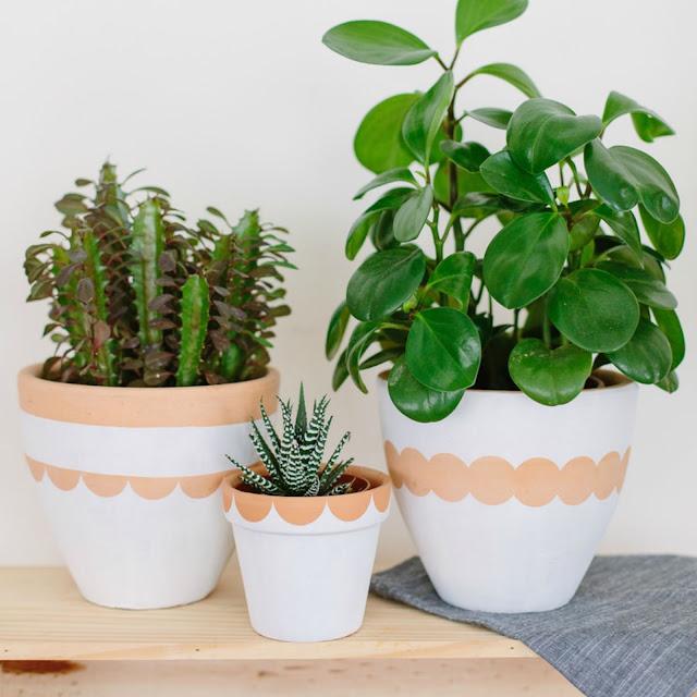 30 im genes de inspiraci n para decorar con macetas plantas for Decoracion de patios con macetas