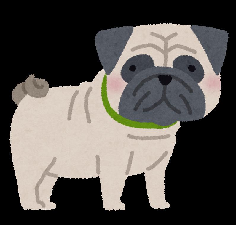 パグのイラスト犬 かわいいフリー素材集 いらすとや