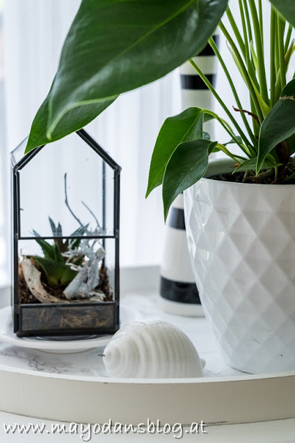 Dekorieren mit Zimmerpflanzen