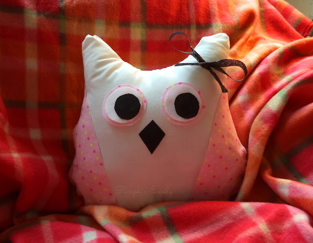 Cute DIY No Sew Owl Pillow