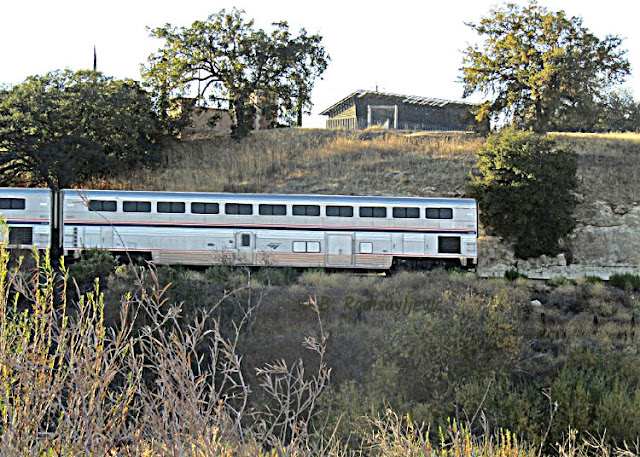 """Larry"" Moore Park in Paso Robles: A Photographic Review - Amtrak Train Seen from Park"