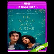El sol también es una estrella (2019) WEB-DL 1080p Audio Dual Latino-Ingles