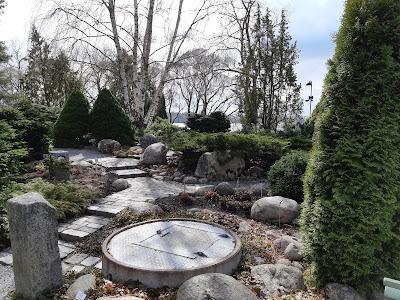 Pensaita ja kivipolku Hatanpään Arboretumissa