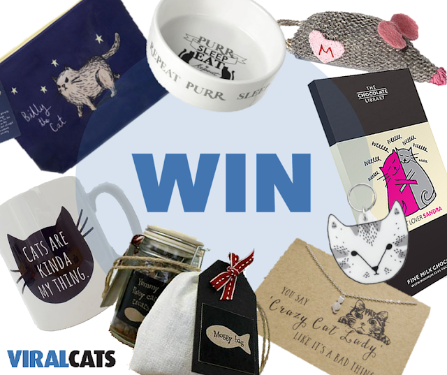 Viral Cats Hamper Giveaway