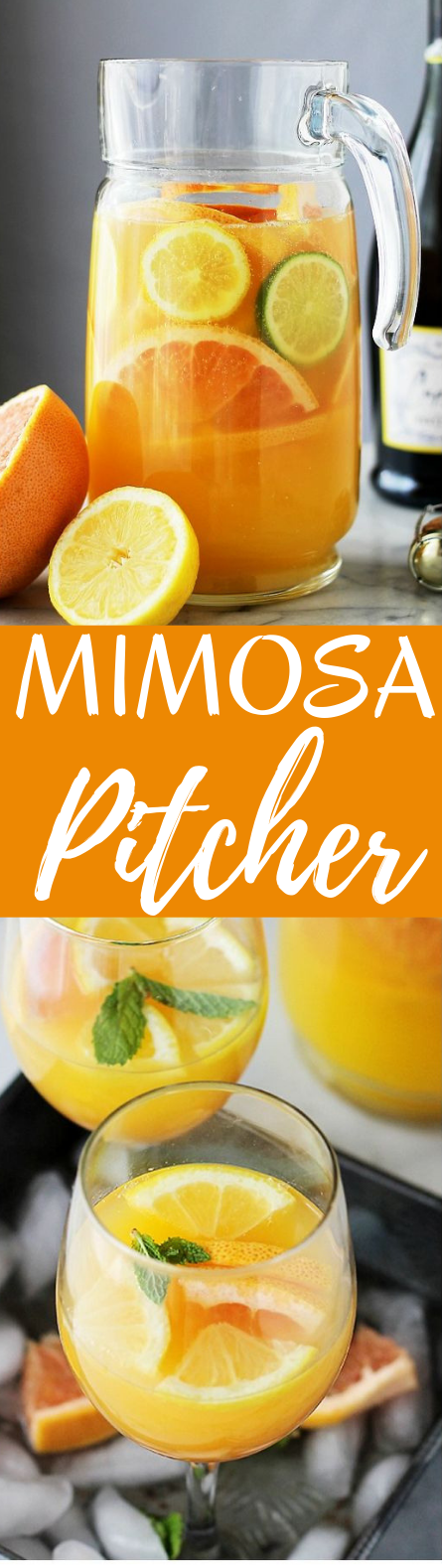 Mimosa Pitcher Cocktail #drinks #party