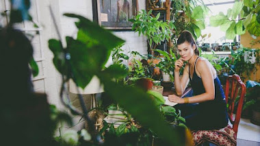 Homestead Brooklyn: sin plantas (de interior) no hay paraíso