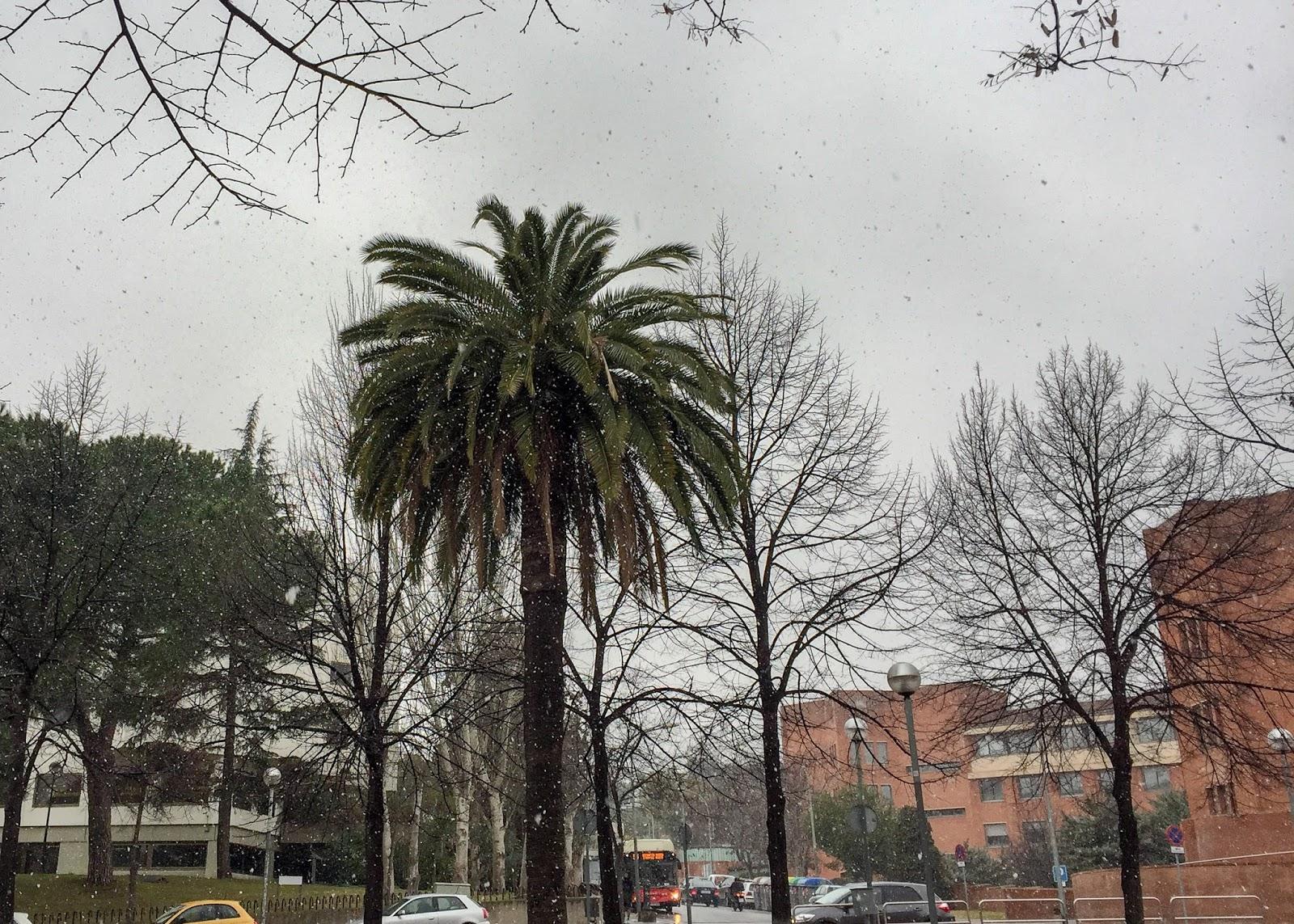 zima Barcelona