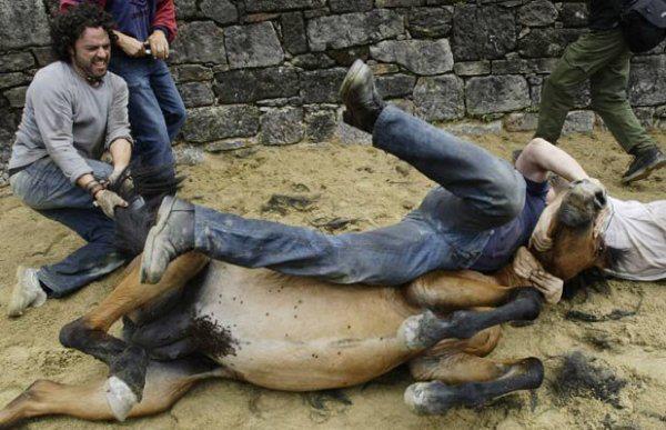 cheval espagnol torture
