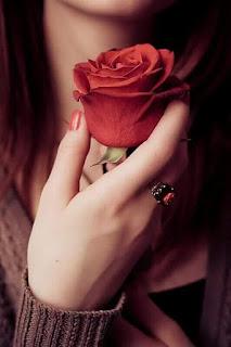 Flower Dp