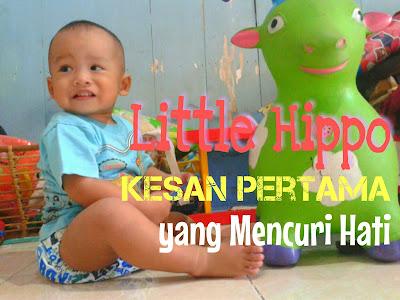 Little Hippo: Kesan Pertama yang Mencuri Hati