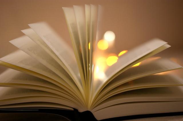 Lesenswert #1 www.nanawhatelse.at #literaturliebe #buchblog #fundstücke