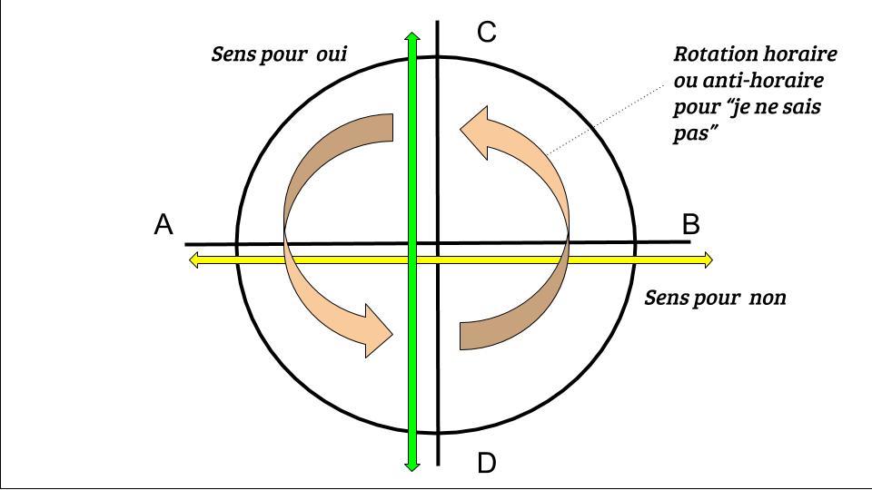 Pour consulter l'oracle oui non avec un pendule, il doit tourner ou osciller dans les sens prévus