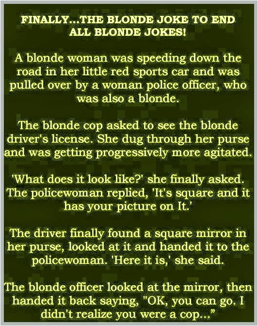 Blonde Joke Pictures 4