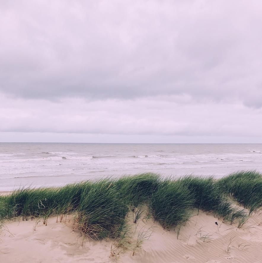 De duinen van Westende met op de achtergrond de zee.